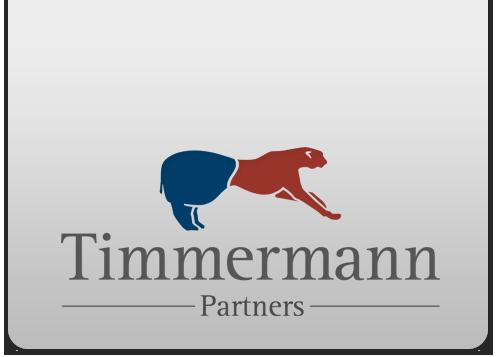 Timmermann partners